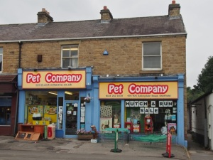 Pet Company.  Sheffield S7