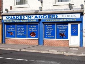"""Snakes """"n"""" Adders"""